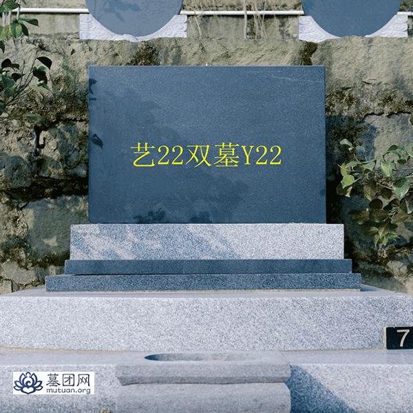 艺22双墓Y22
